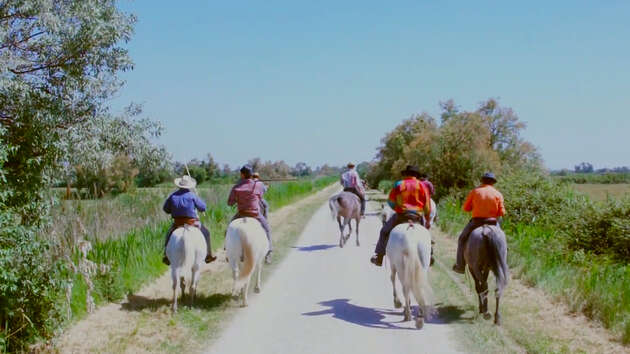 Cowboys in the Camargue