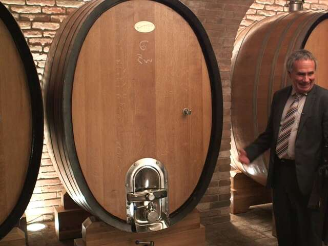 Video: Meet the Wine Maker in the 'Tuscany of Austria'