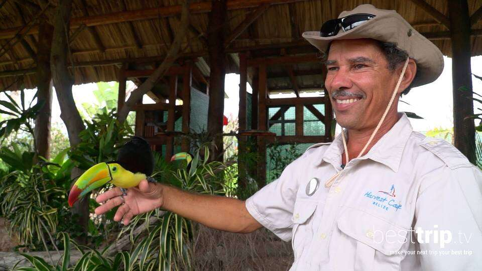Video: Eco-Friendly: Meet this Cruise Line Private Island's In-House Naturalist