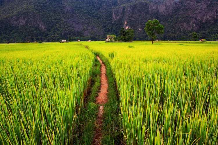 The Charms of the Upper Mekong