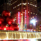 Spotlight on New York City Holiday