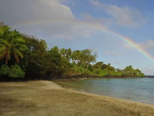 Video: Hawaii's Most Scenic Road Trip