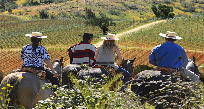 La Casona At Matetic_Horseback Riding_Experiences (1).jpg