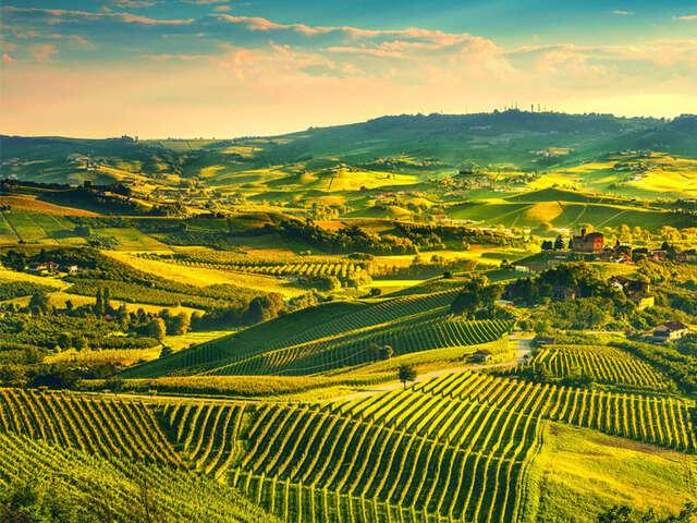 Piedmont – Land of Lakes, Wine & Truffle