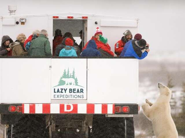 Experience the northern frontier town of Churchill and the wonderful wildlife surrounding it on a 2 night, 3 days – Polar Bear Adventure!