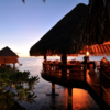 Hawaii and Tahiti Added to Holland America Line's FOOD & WINE Shore Excursions