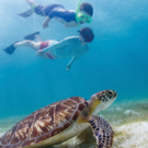 Abercrombie & Kent Luxury Family Australia Vacation - Kids Under 17 Save $500