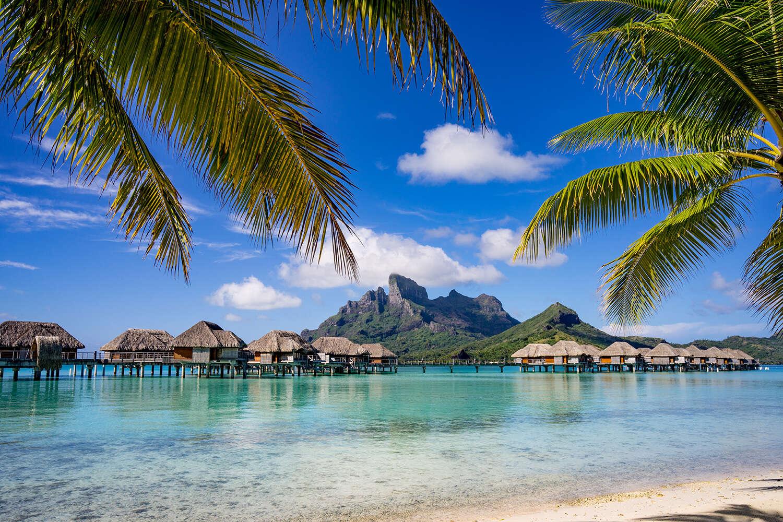Tahiti Banner