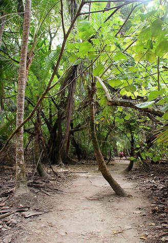 Parque Nacional Natural Tayrona: Finca La Jorara Ecohotel