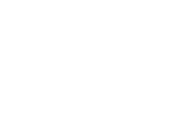 Counsel Travel