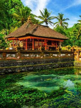 Fasinating history of Bali, Indonesia