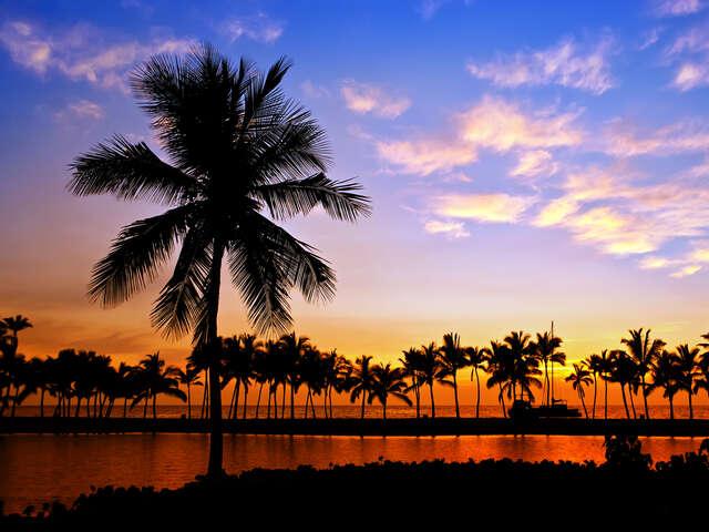 Enjoy A Luxury Sunset Dinner Cruise in Hawaii