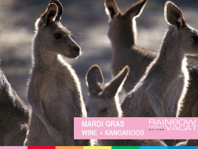 MARDI GRAS - WINE + ROOS