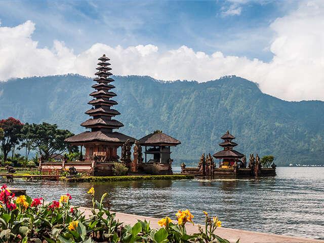 Bali Super Bargain!