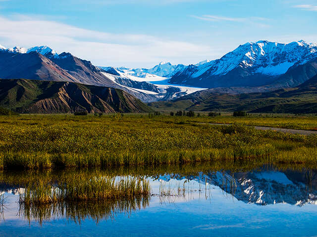 Great Value Alaska Cruises!