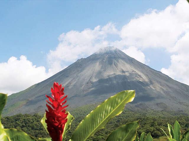 Monkeys, Jungles and Volcanoes - Family Experience