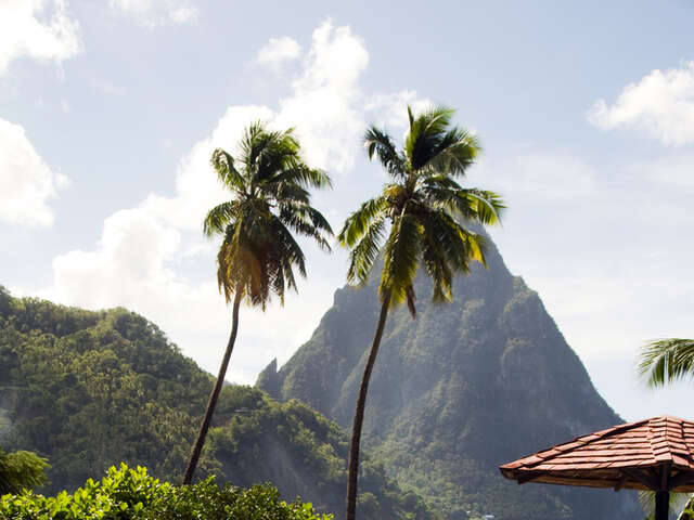 Explore Bay Gardens Hotel in St. Lucia