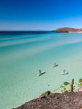 Whales, turtles, paddle boarding, kayaking, food, artists - the Magical Paradise of Todos Santos, Mexico