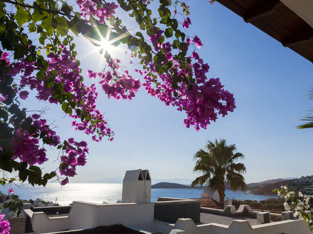 5 Things You Need To Know About Bodrum