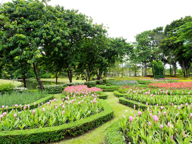 The Story of the 500-Year Orto Botanico