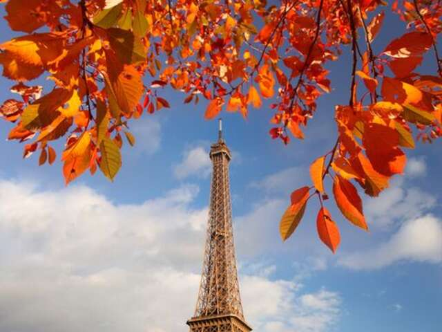 Enjoy the Grandeur and the Billions of Lights of the Eiffel Tower