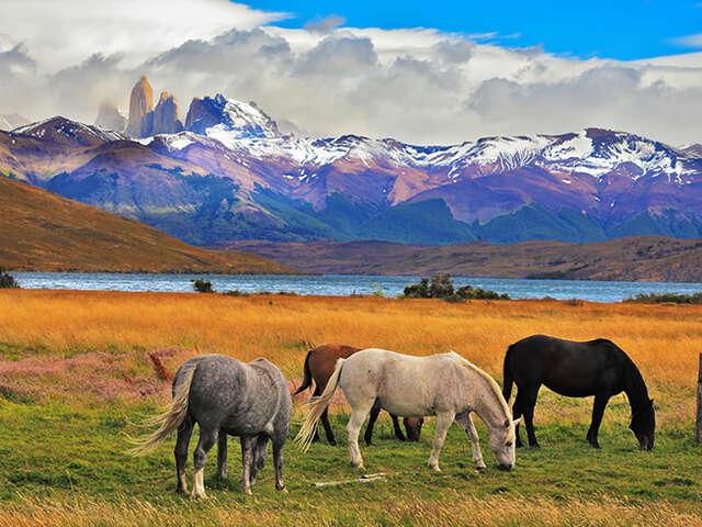 Patagonia Grand Adventure 2016