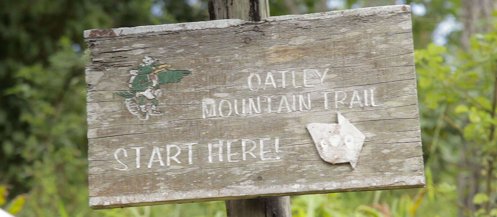 Explore the Holywell Recreation Area