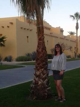 Outside Agent--Amanda Pilkington--Lacombe AB
