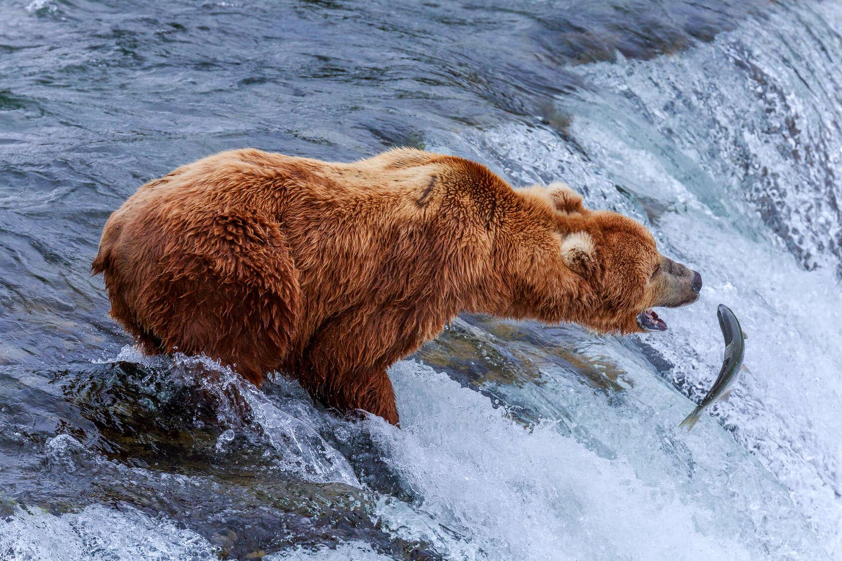 Sneak Peak at 10 Alaskan Ports of Call