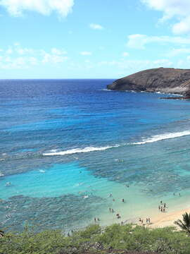 The Gathering Place Oahu