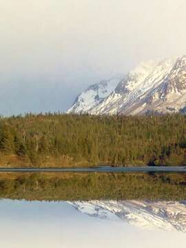 Stillpoint Lodge is Alaska's perfect escape