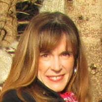 Judi Oracheski