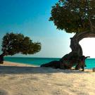 Top Caribbean Beaches for a Winter Escape
