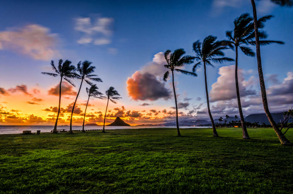Celebrity Cruises - Hawaii Cruise & Stay