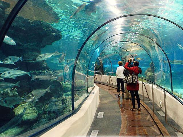 Singapore_landingpage_underwaterworld.jpg