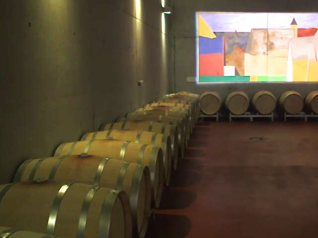 Video: Meet the Wine Maker in the 'Tuscany of Austria' on the Danube