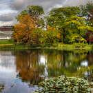 Nature & Gardens