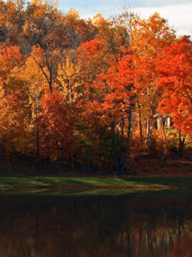 Autumn Adventures in New England & Canad