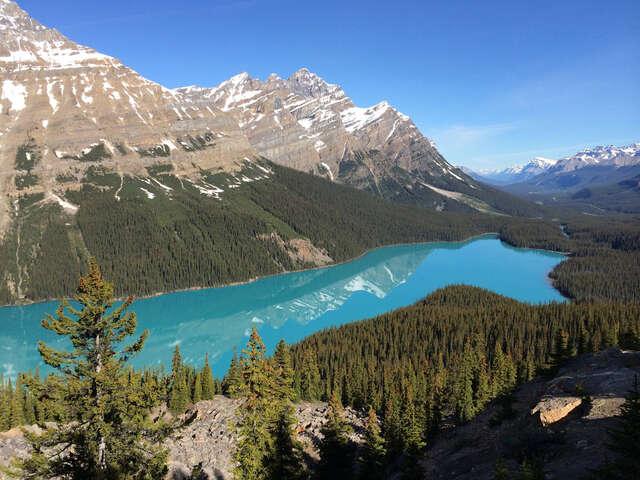Alberta Farm Tour ~ July 10-17, 2018 - 8 Days