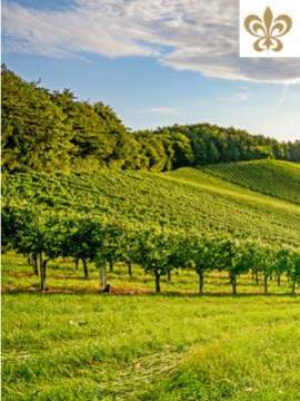 Travel the 'Road to Happiness': Relais & Chateaux' Wine Routes