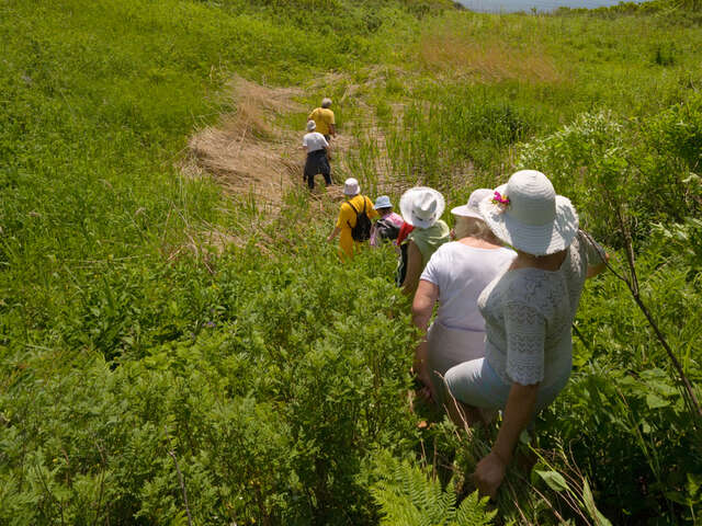 Group & Incentive Travel