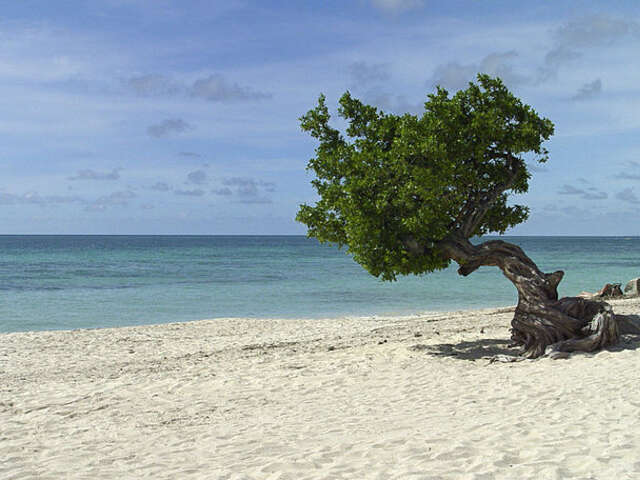 Time To Get Back to the Caribbean! Escape To One of These Unique Beaches