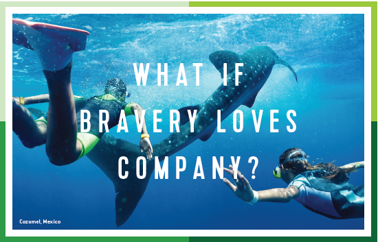 What If Bravery Loves Company?