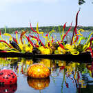 Chihuly at the Biltmore