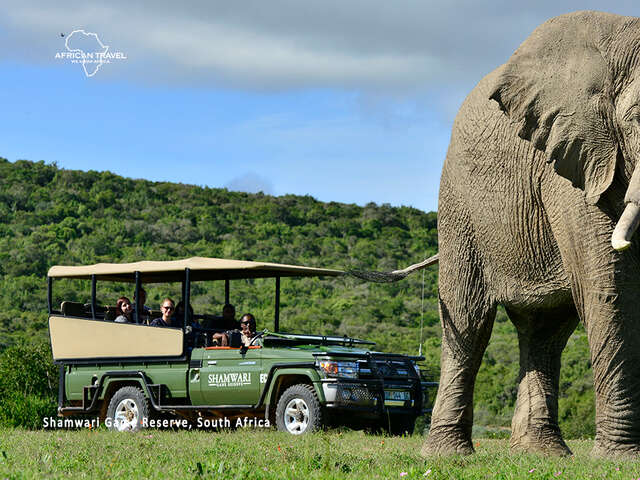 African Travel - Receive a complimentary Winelands Tour!