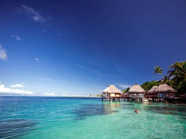 Pleasant Holidays - Nonstop flights to Tahiti on United Airlines!