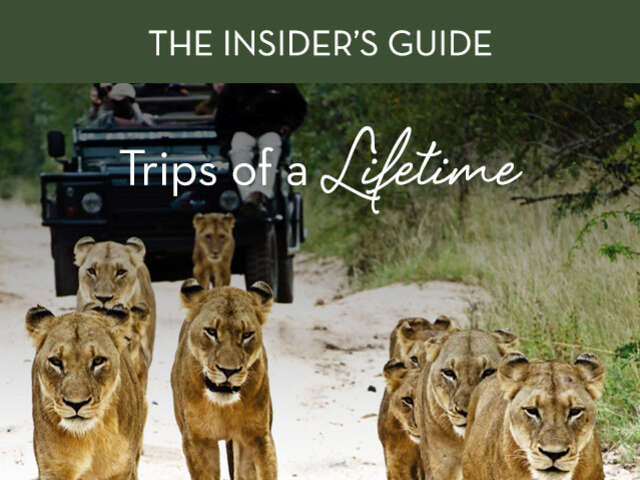Virtuoso Insider's Guide: Trips of a lifetime