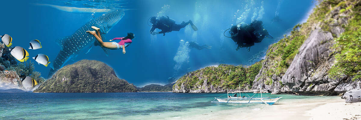 Fly & Sea Dive Adventures