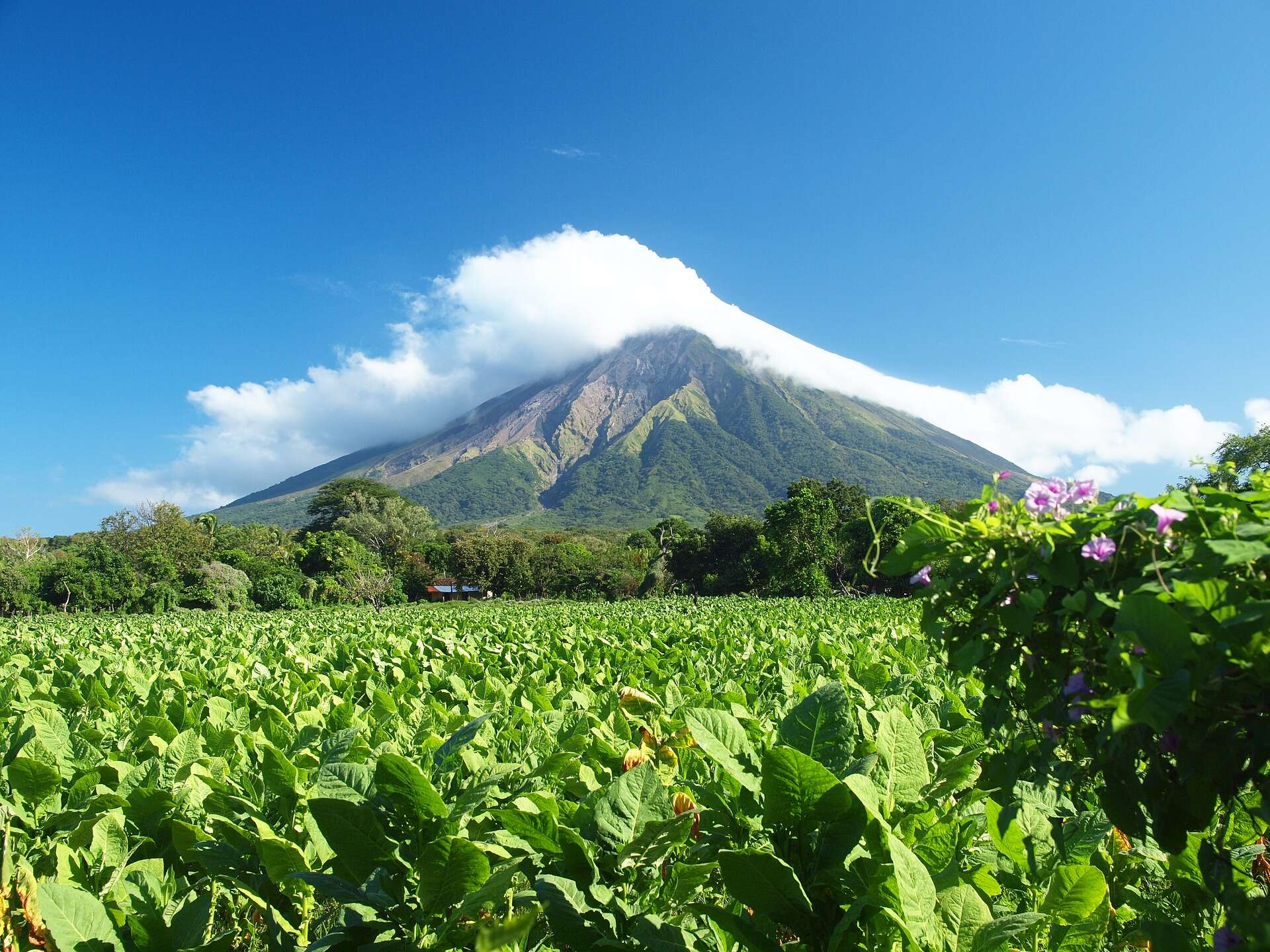 Enjoy the best of what Nicaragua has to offer with McPhail Travel!