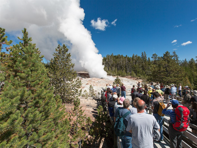 The World's Tallest Geyser Is At It Again